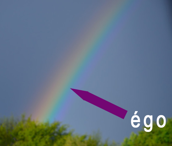 ego-arc-en-ciel-web