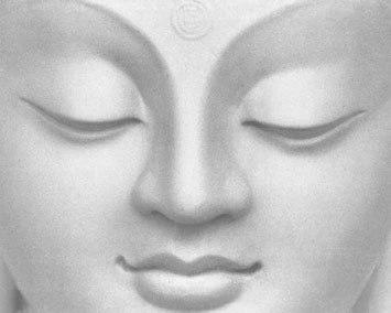 bouddha50