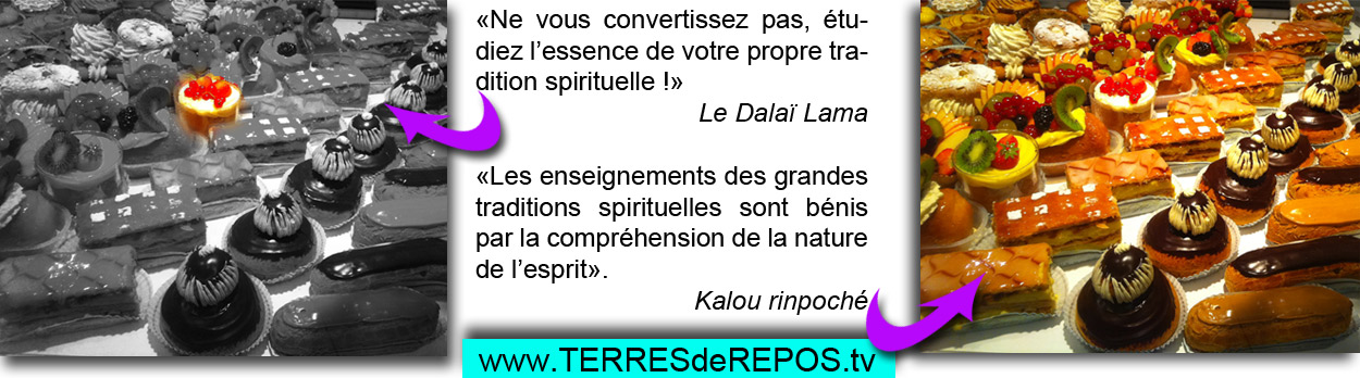 patisseries-dalai-lama2