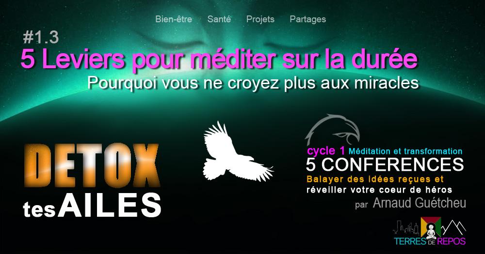 1-3-detox-levier-pour-meditertrp2