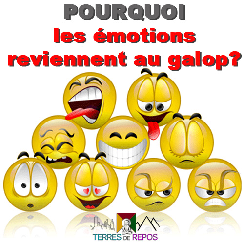 emotions-galop-comment-mediter